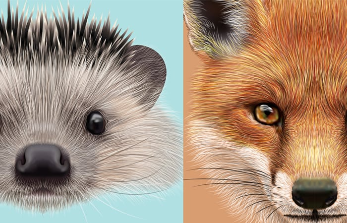 Product Positioning According to the Hedgehog and the Fox